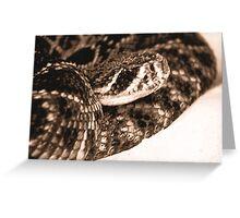 Rattlesnake......ikky Greeting Card