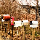 Farming Letterboxes by Marnie Hibbert