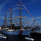 Sail Boston- US Coast Guard by LudaNayvelt