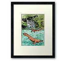 Platypus Falls Framed Print