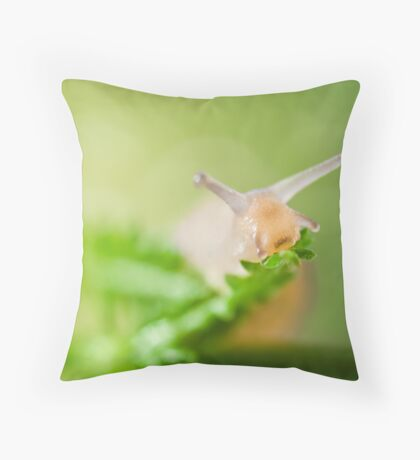 this is a loose-fitting body, so it's still comfortable after a long carbohydrate binge... Throw Pillow