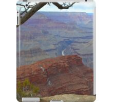 Grand Canyon 11 iPad Case/Skin