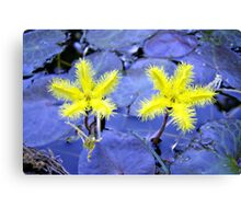 Yellow Snowflake Canvas Print