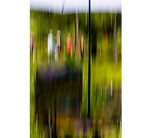 'en plein air'  Photographic Print