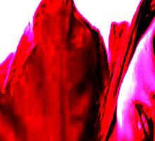 EVOLUTION COVER NO  2 by morphfix
