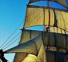 Full Sail by Chet  King