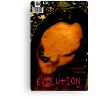 EVOLUTION N0 4 COVER Canvas Print