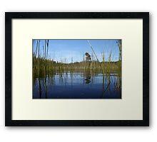 Beautiful Bogs Framed Print