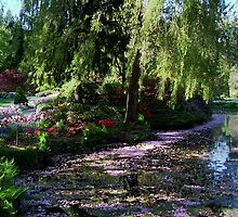 Butchart Gardens in the Spring, (please view large) by AnnDixon