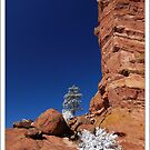 Red Rock with a Splash of White by Robert Mullner