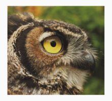 Darwin, A Great Horned Owl Kids Tee