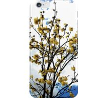 Daytime flowers iPhone Case/Skin