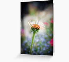 Flowerpower III Greeting Card