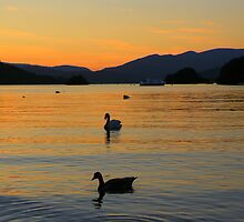 The Lake District: Windermere Silhouettes by Rob Parsons
