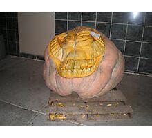 Hefty Pumpkin Photographic Print