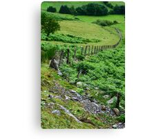 Around Pistyllrhaeadr Canvas Print