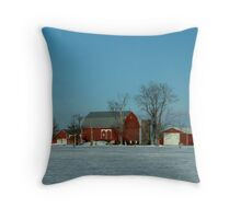 020409-3   RED, WHITE, AND BLUE Throw Pillow