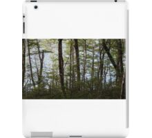 Water through the trees  iPad Case/Skin