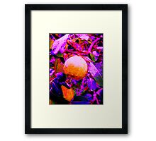 There Was a Menu in the GARDEN! Framed Print