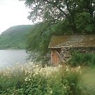 shed by lake by Amanda Norris