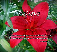 Believe by Greeting Cards by Tracy DeVore