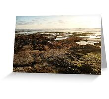 """""""Landscapes & Seascapes"""" Greeting Card"""