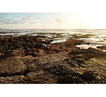 """""""Landscapes & Seascapes"""" Photographic Print"""