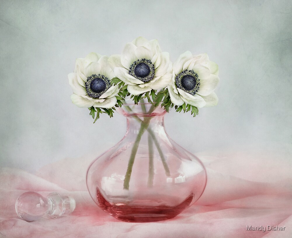 Three by Mandy Disher