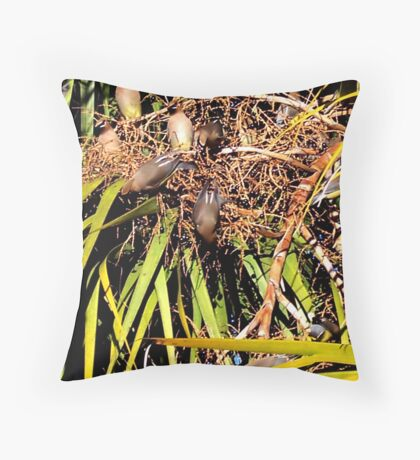 Cabbage Palm Banquet Throw Pillow