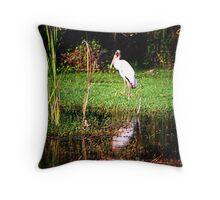 Stork Stopped Throw Pillow