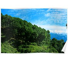 Lush Green Hill Poster