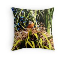 Are You Taking My Picture? Throw Pillow