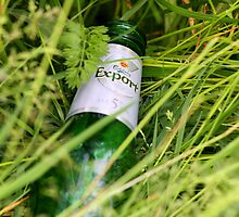 Beer Bottle in the Park by stellelove