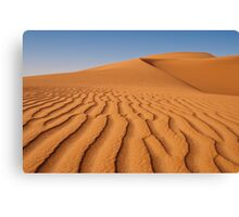 Just a Grain of Sand! Canvas Print
