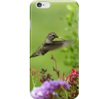 Humming Above the Color iPhone Case/Skin