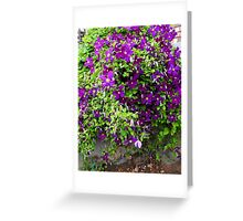 Clematis Bouquet Greeting Card