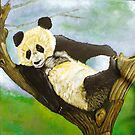 Languid Panda by Cantus