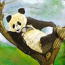 Languid Panda by Cantus