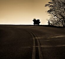 The Lone Road Home by Andy Mueller