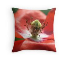 ~The Crown~ Throw Pillow