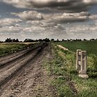 Old Road by Matthew  Epp
