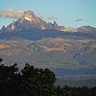 Mount Kenya by Brendan Buckley