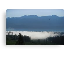 Inversion Canvas Print