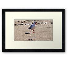 If You Can't Say Something Nice... Framed Print