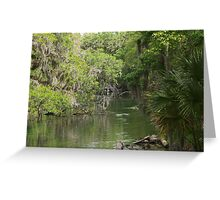 Blue Springs Park Greeting Card