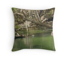 Turtles at Blue Springs Throw Pillow