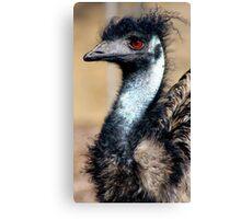 Emu Portrait Canvas Print