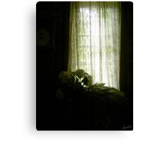 Shining Window Canvas Print