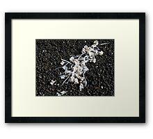 Scattered Bone Framed Print