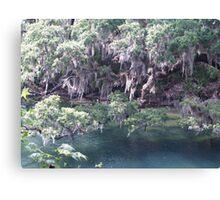 Blue Springs Park Canvas Print